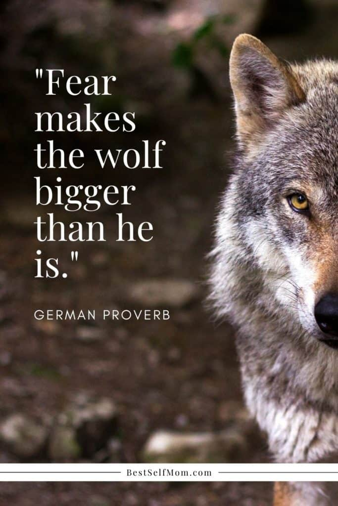 Half of a wolf face with predatorial look in his eyes. Quote layered over image.